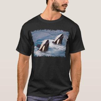 Camiseta Dos orcas