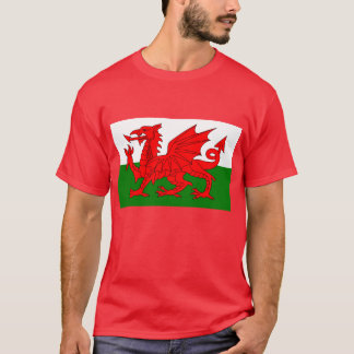 Camiseta Dragón Galés