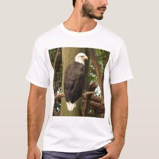 Camiseta Eagle calvo (pájaro nacional)