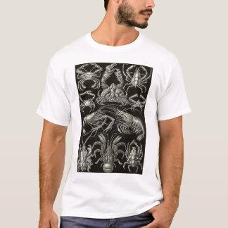 Camiseta Ernst Haeckel - decápodos