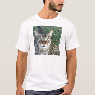 "Camiseta ""Ey usted"" dice este gato"