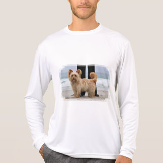 Camiseta Farris - Lucy - raza mezclada
