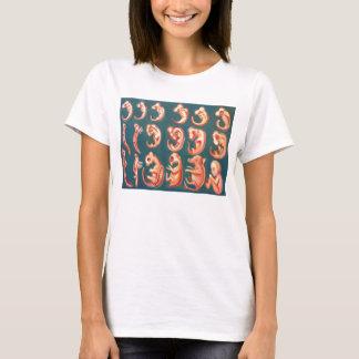Camiseta Feto