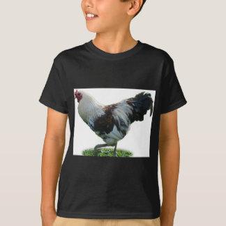 Camiseta gallo 1
