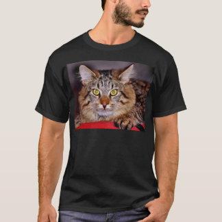 Camiseta Gato de Maine-Coone