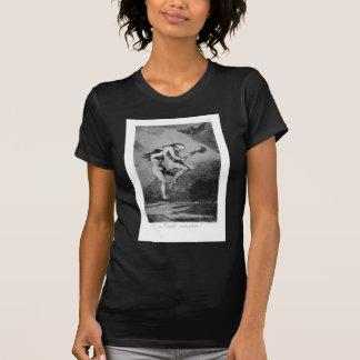 Camiseta Goya_-_Caprichos_