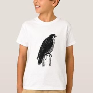 Camiseta Halcón de peregrino (ilustracion)