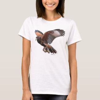 Camiseta Harris Hawk en vuelo