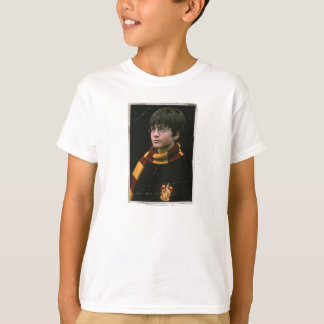 Camiseta Harry Potter 2