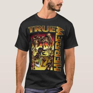 Camiseta Hebreo verdadero (Samson)