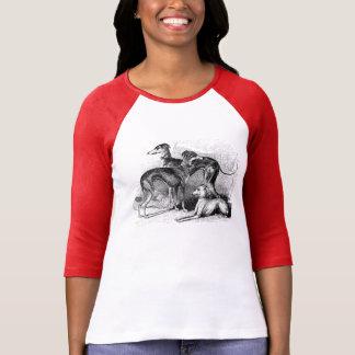 Camiseta hermosa del galgo