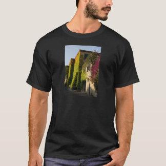 Camiseta Hojas coloridas en las paredes de la casa