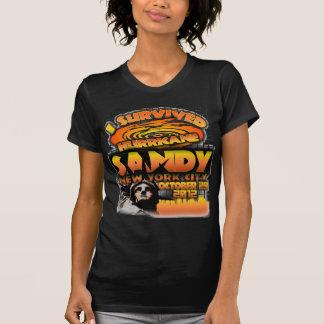 Camiseta Huracán Sandy, New York City