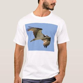 Camiseta IMG_7599-11x9
