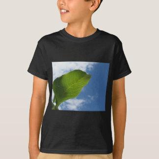 Camiseta La hoja de la nuez se encendió por luz del sol