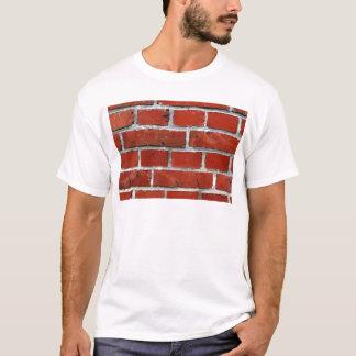 Camiseta Ladrillos