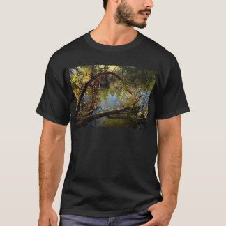 Camiseta Lago 4 park del barranco de Franklin