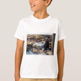 Camiseta Leones marinos en el dique flotante en San