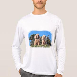 Camiseta Lixiviación - caniches - Romeo Remy