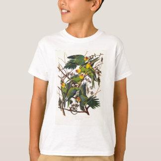 Camiseta Loro de Carolina - John James Audubon (1827-1838)