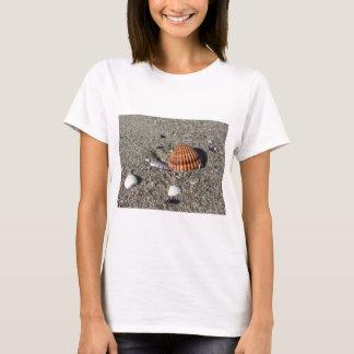 Camiseta Los Seashells el verano de la arena varan la