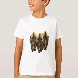 Camiseta Los tres amigos