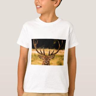 Camiseta macho del parque de Richmond