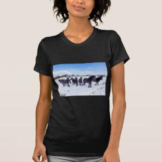 Camiseta Manada de los caballos negros del frisian en nieve