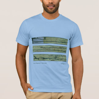 Camiseta Mapa de camino romano