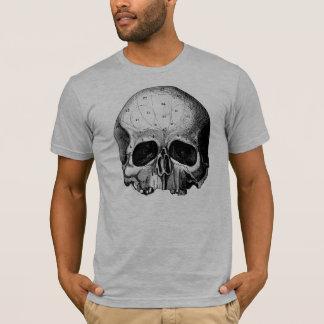 Camiseta medio cráneo
