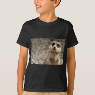 Camiseta Meerkat Grande-Observado lindo