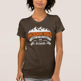 Camiseta Naranja del vintage de Jackson Hole