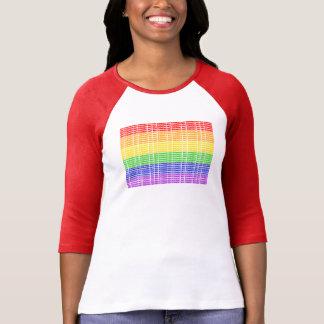 """Camiseta """"No derecho"""" bandera gay"""