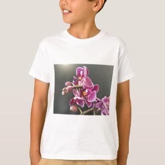Camiseta orquídea