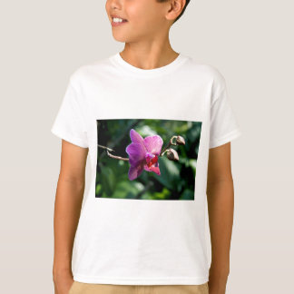 Camiseta Orquídea mágica