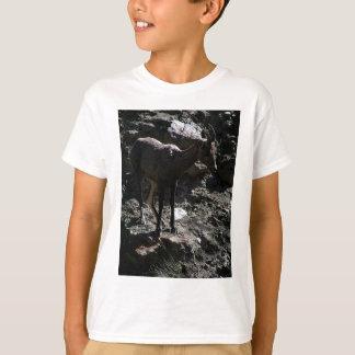 Camiseta Ovejas de Bighorn de la montaña rocosa, oveja