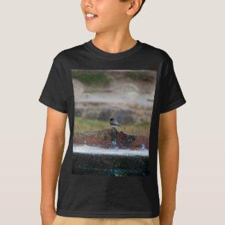 Camiseta pájaro en una pared
