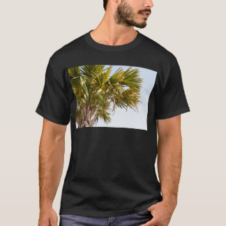 Camiseta Palmera de la costa este Myrtle Beach famoso