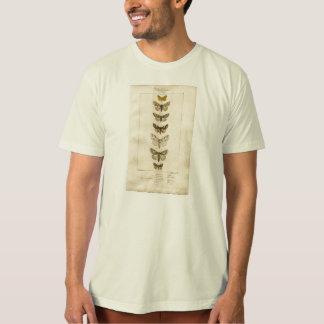 Camiseta para hombre orgánica de los Nocturnes
