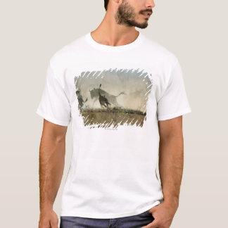 Camiseta Parque nacional de Kruger, provincia de