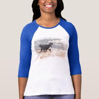 Camiseta Paseo en la playa