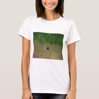 Camiseta Pato del pequeño grebe en plumaje de la cría
