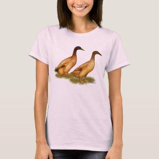 Camiseta Patos:  Campbell de color caqui