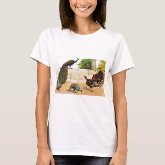 Camiseta Pavo real, Turquía, y aves de Guinea