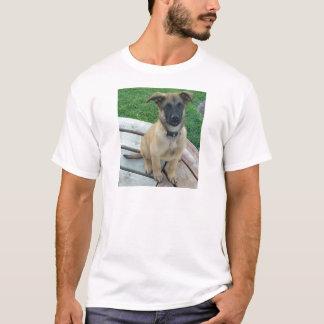 Camiseta Perro belga de Malinois del pastor