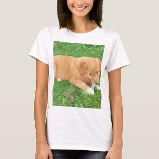 Camiseta perro perdiguero tocante del pato de Nueva Escocia