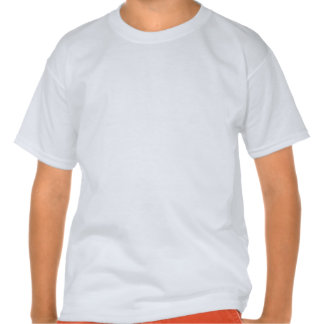 Camiseta personalizada de la mezcla de Hanes de