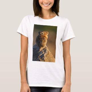 Camiseta pika