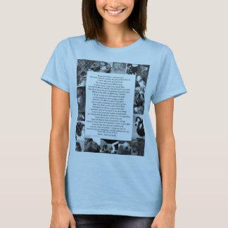 Camiseta Pitbull… No quiero luchar…