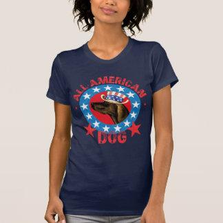 Camiseta Plott patriótico
